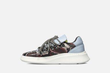 TROPHY Sneakers - Multicolor