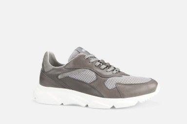 DRAGON Sneakers - Grey