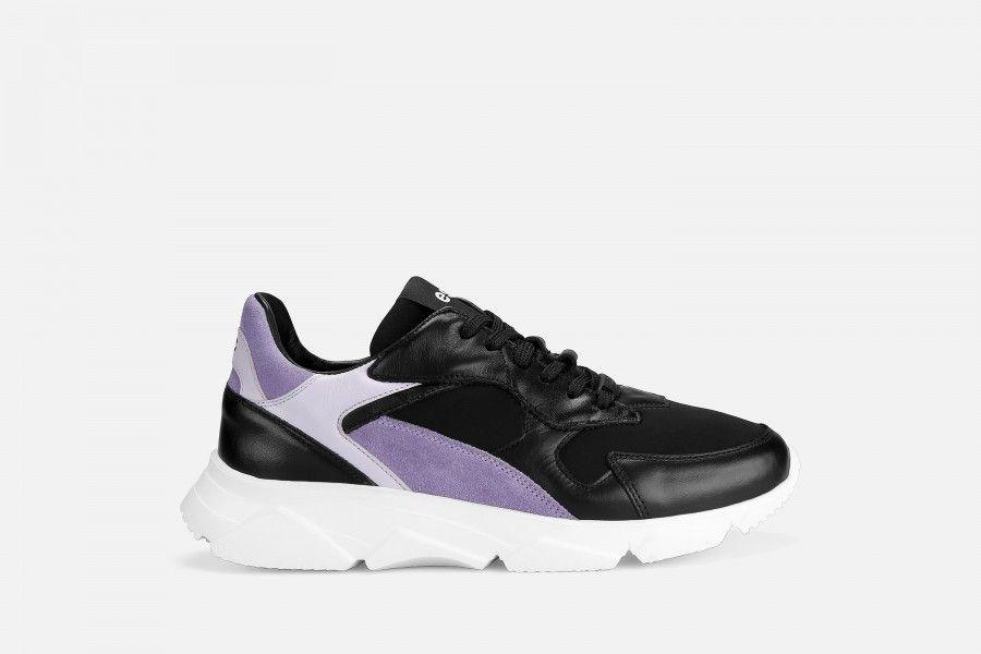DRAGON Sneakers - Multicolor